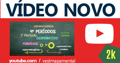 Gametogênese – Vídeo Novo YouTUBE